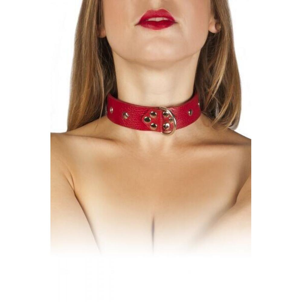 БДСМ ошейники - Ошейник Dominant Collar, red