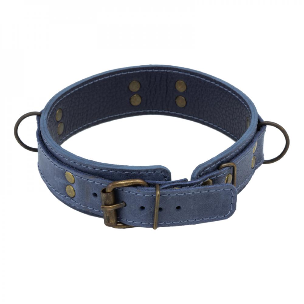 БДСМ ошейники - Ошейник LOVECRAFT размер M голубой 1