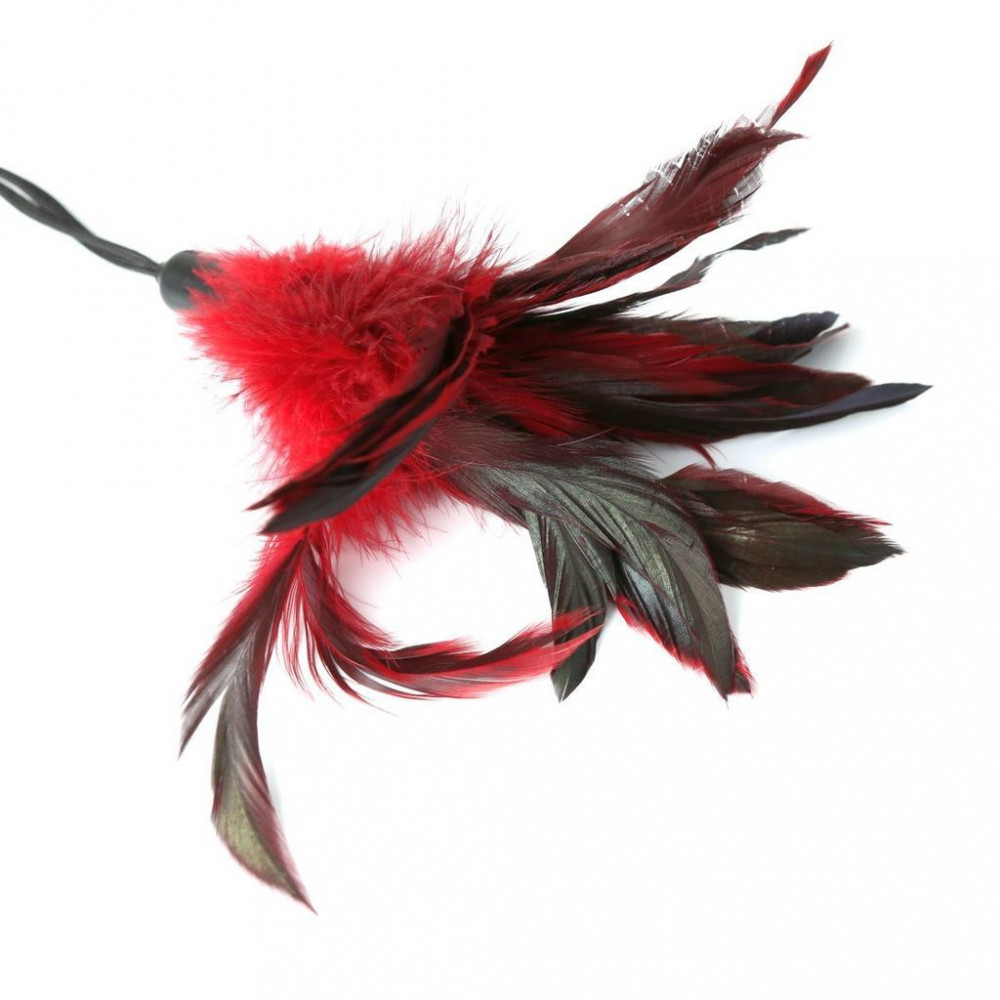 БДСМ плети, шлепалки, метелочки - Метелочка Sportsheets - PLEASURE FEATHER RED 1