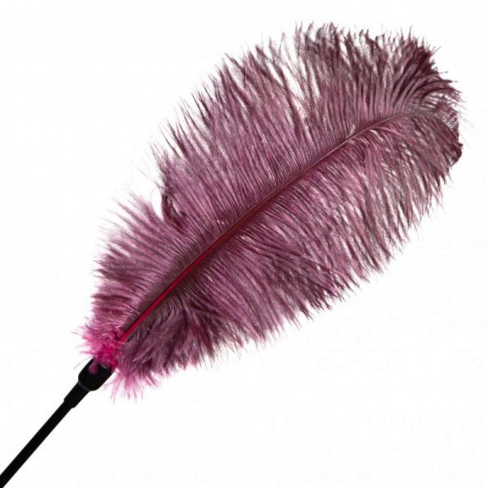 БДСМ плети, шлепалки, метелочки - Перо для Шалостей Big ,Burgundy