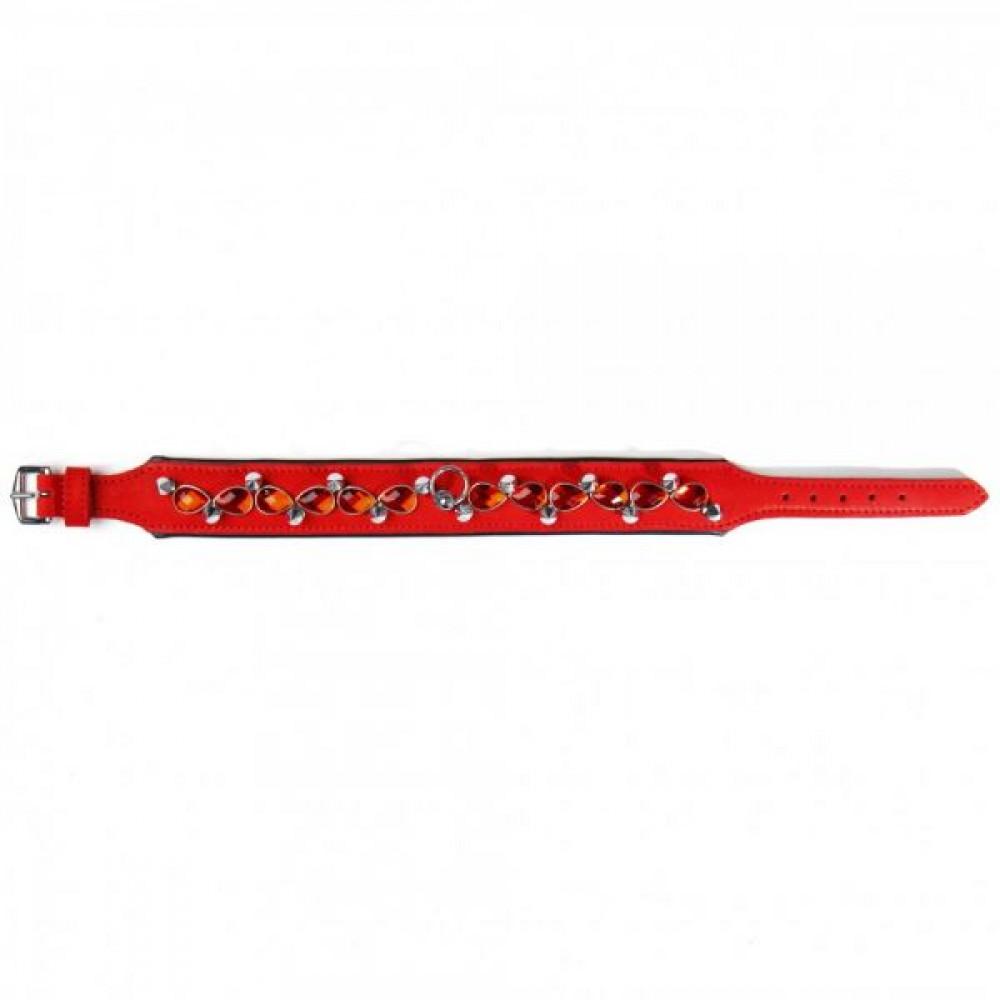 БДСМ ошейники - Ошейник Leather Jewel & Spike, Red        1